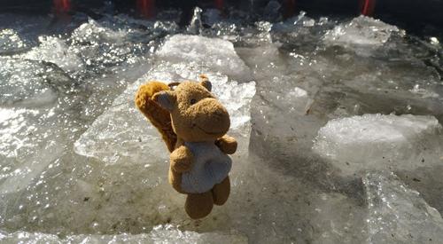 Emil und das Eis