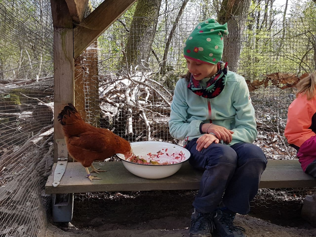 ... mit einem Huhn ...
