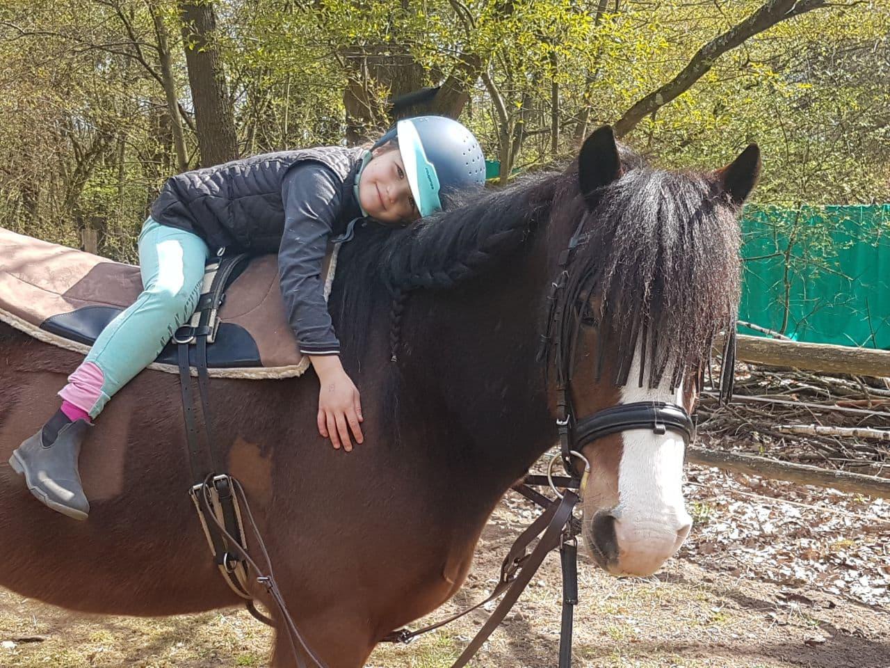 Das Glück der Erde liegt auf dem Rücken der Pferde. ;-)